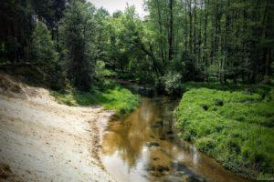 Zalew Ostrowy i Kocinka, czyli 150 km :)